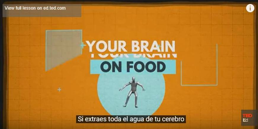 Comida afecta a cerebro
